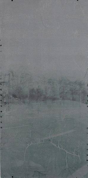 Persistence 100x50cm, Transferdruck auf lackiertem Blech, 2014